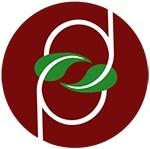 Punditdomain logo