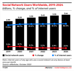 Social network users 2019-24