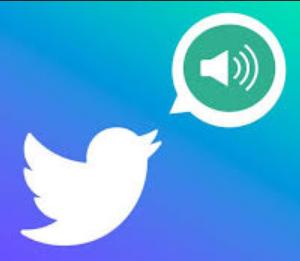 Twitter voice